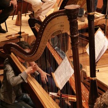 Ensaio Orquestra Sinfônica Municipal (Foto: Desirée Furoni)